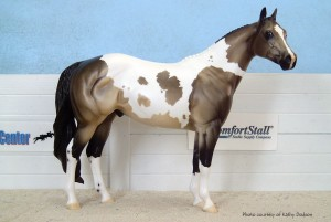 Sailor, owned by Kathy Dodson